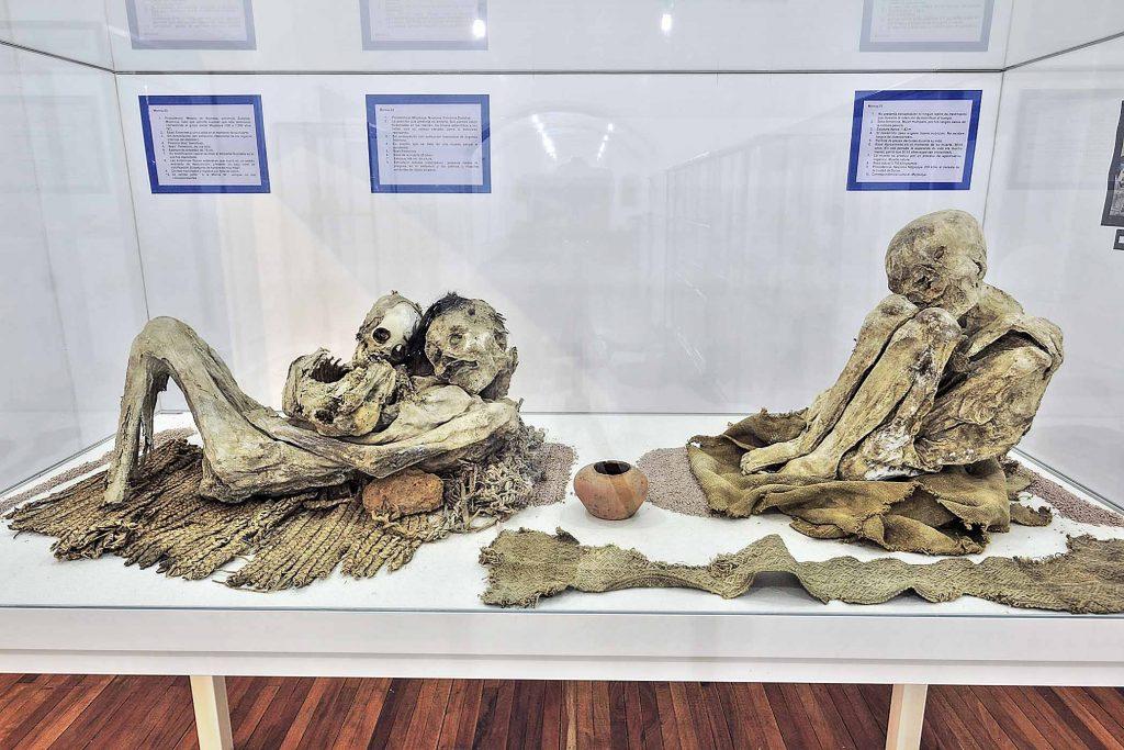 sites pour les momies de sucre datant sites de rencontres danois gratuit